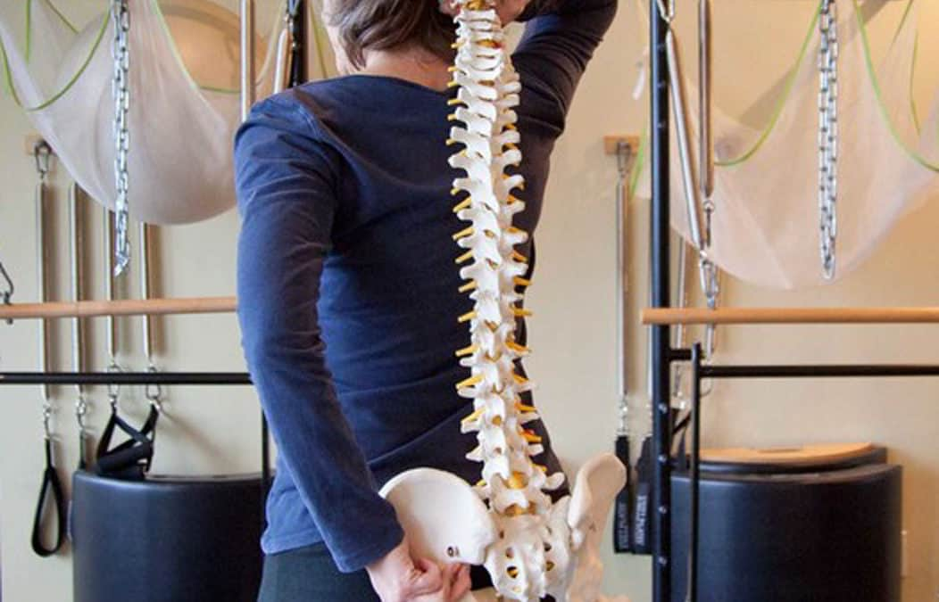 Exercises and education for back pain and spinal health
