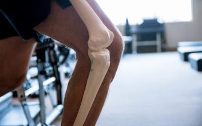 Hips & Knees:Franklin Method® Virtual Workshop May 28th